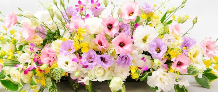 11月の月命日にどんなお花をお供えする?:知って得する!?お花や観葉 ...