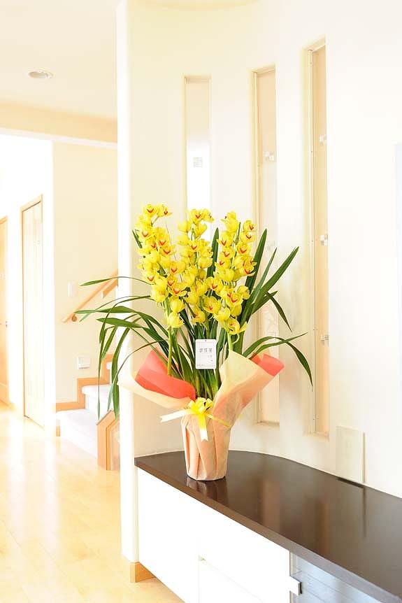 <p>蘭の中でも最高の花保ちを備えているので、贈られた方も、その美しさを長く楽しんでいただけます。</p>