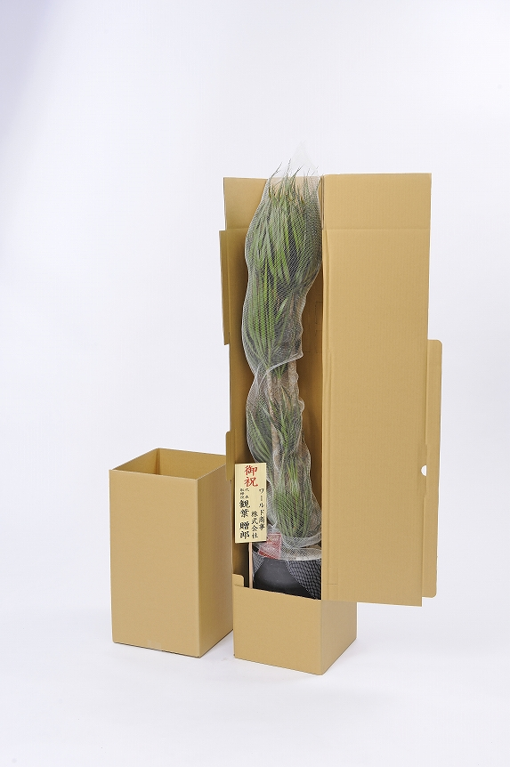 <p>立札も無料でお付けしております。厳重な梱包で発送いたしますので、ご安心いただけます。</p>