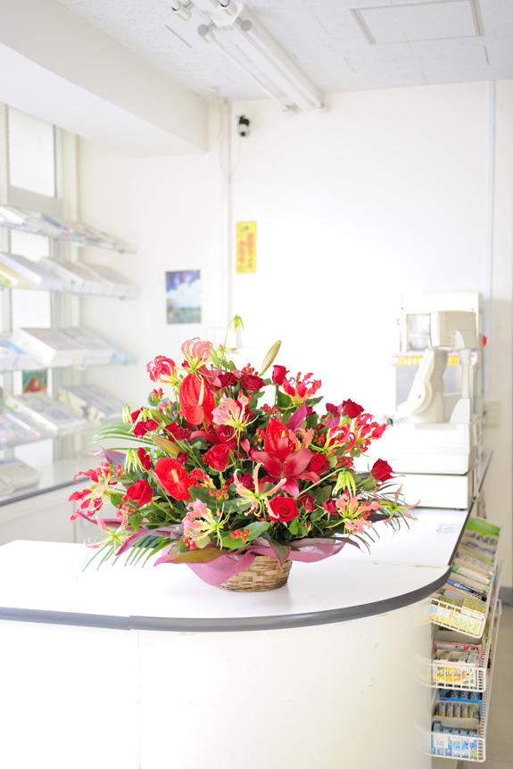 <p>お店の開店祝いに・・・ レジ脇をとても華やかにします!<br /> </p>