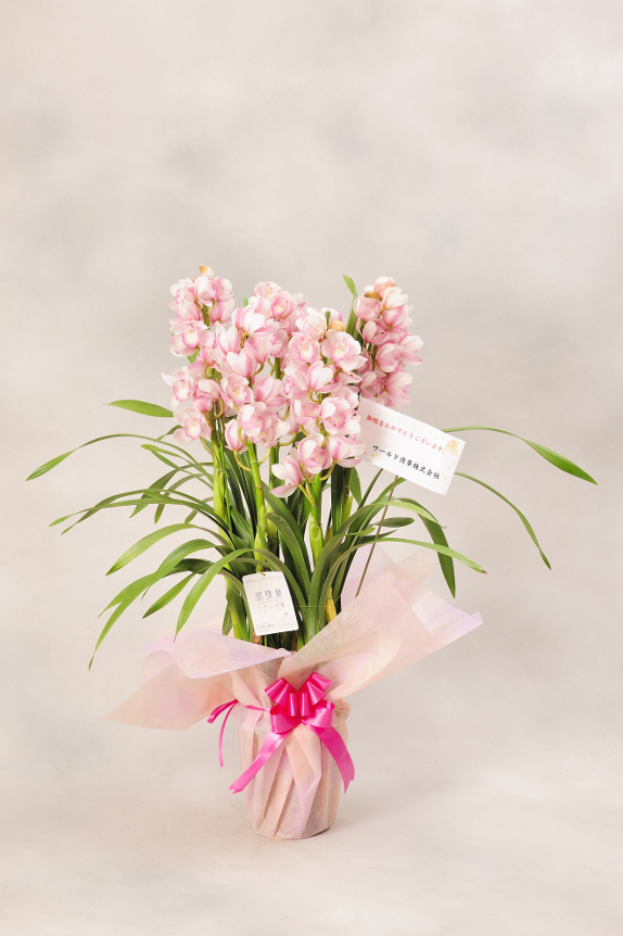 <p>お花には立札またはメッセージカードをお付けしております。</p>