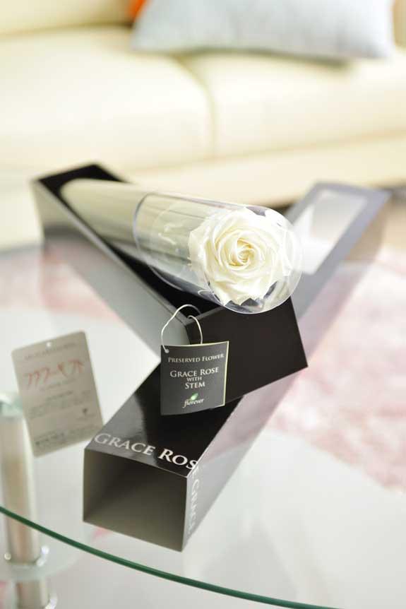 <p>プリザーブドフラワーLuxury Rose(パールホワイト)は各種お祝い事の簡単なフラワーギフトや贈り物にオススメです。</p>