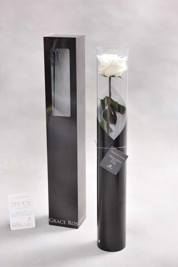 <p>スタイリッシュなデザインのケースに入ったプリザーブドフラワーLuxury Rose(パールホワイト)は用途を選ばないフラワーギフトや贈り物としてご利用いただけます。</p>