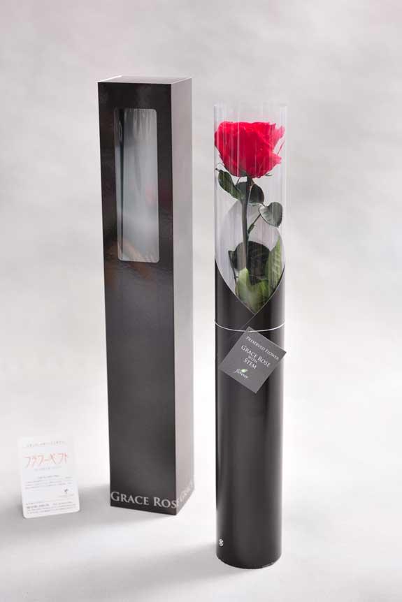 <p>スタイリッシュなデザインのケースに入ったプリザーブドフラワーLuxury Rose(チェリーレッド)は用途を選ばないフラワーギフトや贈り物としてご利用いただけます。</p>