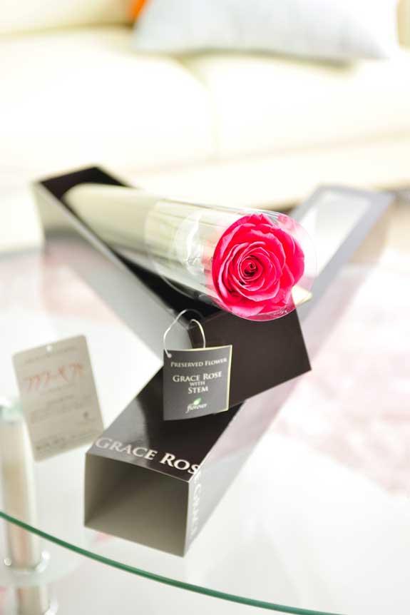 <p>プリザーブドフラワーLuxury Rose(ホットピンク)は各種お祝い事の簡単なフラワーギフトや贈り物にオススメです。</p>
