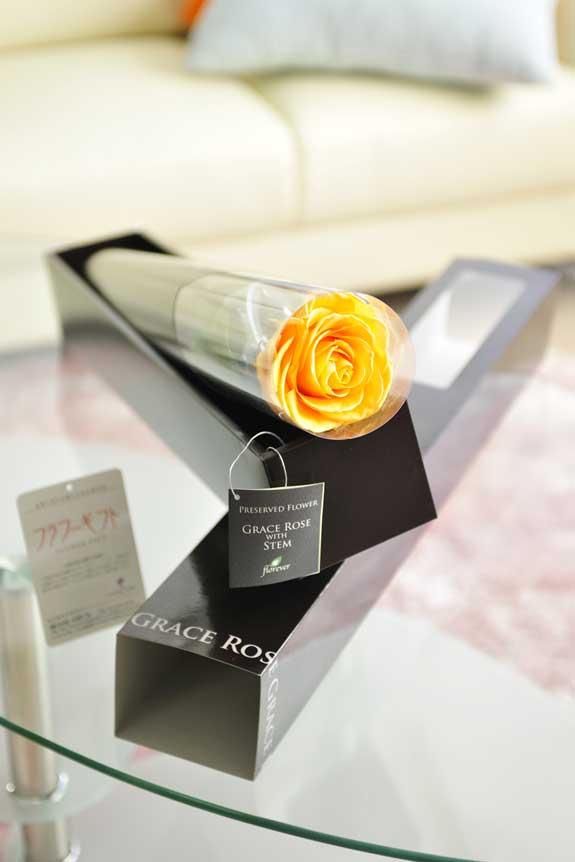 <p>プリザーブドフラワーLuxury Rose(ゴールデンイエロー)は各種お祝い事の簡単なフラワーギフトや贈り物にオススメです。</p>