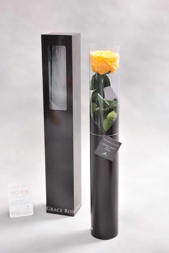 <p>スタイリッシュなデザインのケースに入ったプリザーブドフラワーLuxury Rose(ゴールデンイエロー)は用途を選ばないフラワーギフトや贈り物としてご利用いただけます。</p>
