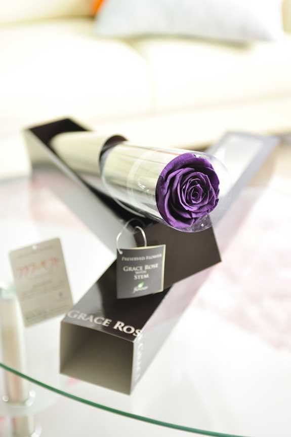 <p>プリザーブドフラワーLuxury Rose(バイオレット)は各種お祝い事の簡単なフラワーギフトや贈り物にオススメです。</p>