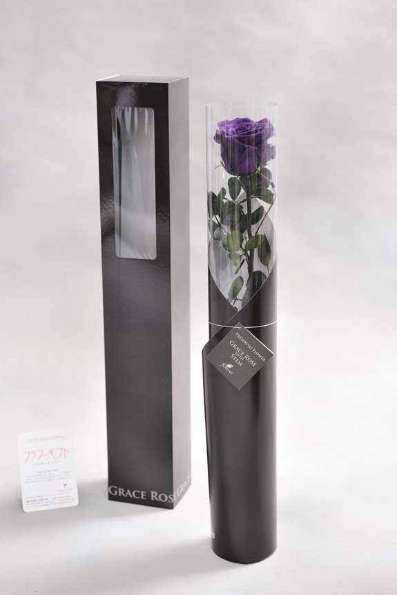 <p>スタイリッシュなデザインのケースに入ったプリザーブドフラワーLuxury Rose(バイオレット)は用途を選ばないフラワーギフトや贈り物としてご利用いただけます。</p>