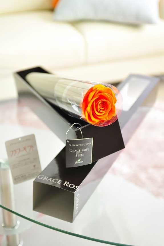 <p>プリザーブドフラワーLuxury Rose(タンジェリンオレンジ)は各種お祝い事の簡単なフラワーギフトや贈り物にオススメです。</p>