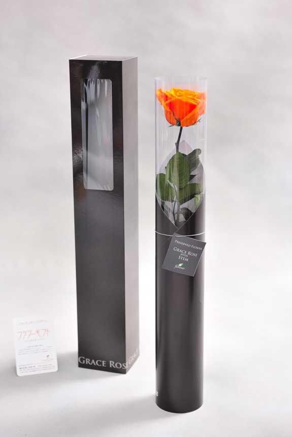 <p>スタイリッシュなデザインのケースに入ったプリザーブドフラワーLuxury Rose(タンジェリンオレンジ)は用途を選ばないフラワーギフトや贈り物としてご利用いただけます。</p>