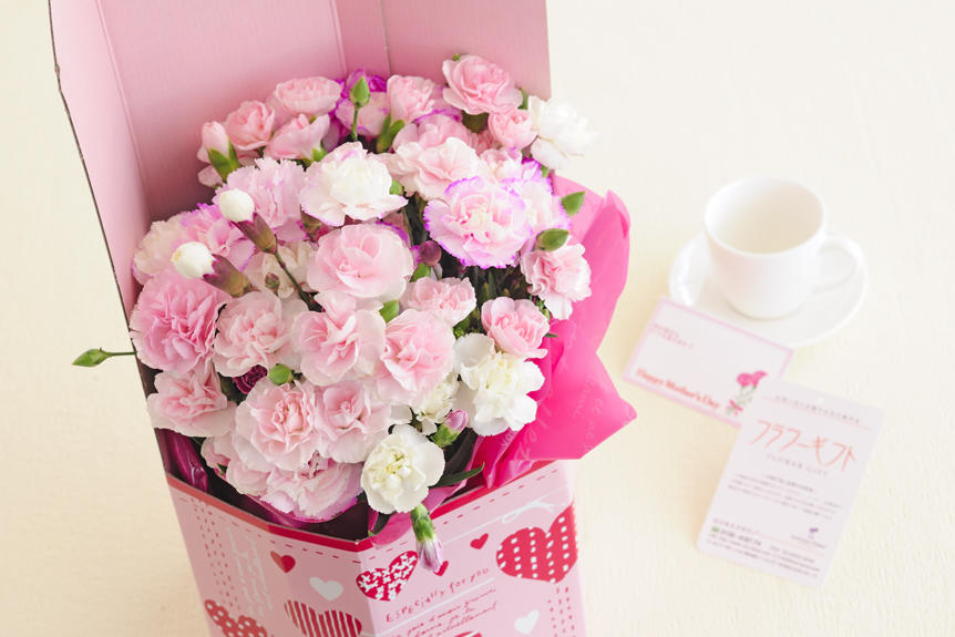 <p>甘いバニラの香りがする国産鉢植えカーネーションは、母の日のプレゼント、贈り物にオススメのお花です。</p>