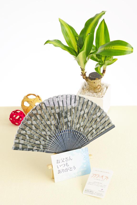 <p>父の日のフラワーギフト、贈り物、プレゼント用の商品は、葉っぱにメッセージ入りの観葉植物と扇子のギフトセットを用意しました。</p>