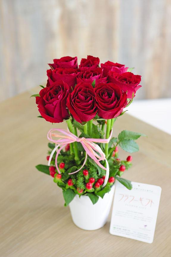 <p>優雅なバラの姿が印象的なアレンジメントフラワーは、お手頃価格・サイズで様々なお祝いの贈り物・プレゼント・フラワーギフトにオススメです。</p>