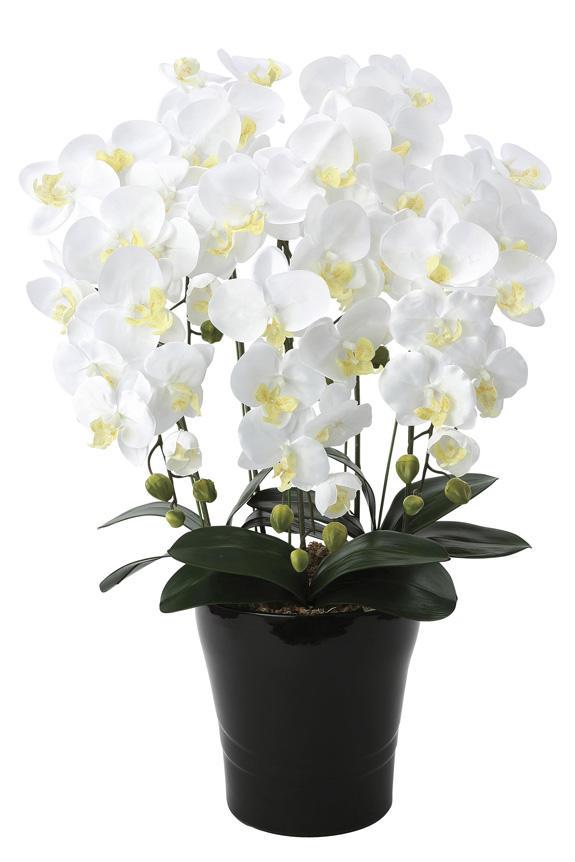 <p>受付やオフィス、リビングのインテリアとしても人気の胡蝶蘭の造花アート・アレンジメント</p>