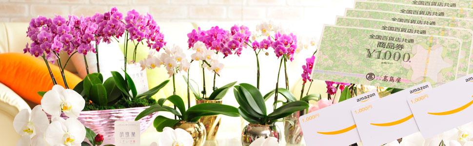 花と商品券