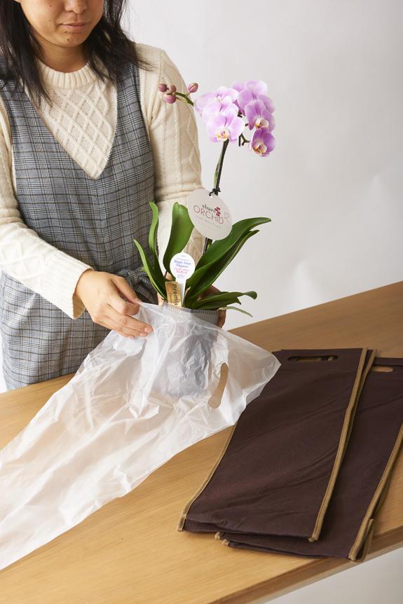 <p>みんなでシェア出来る様、ビニール袋とお持ち帰り用の袋が付いています。</p>