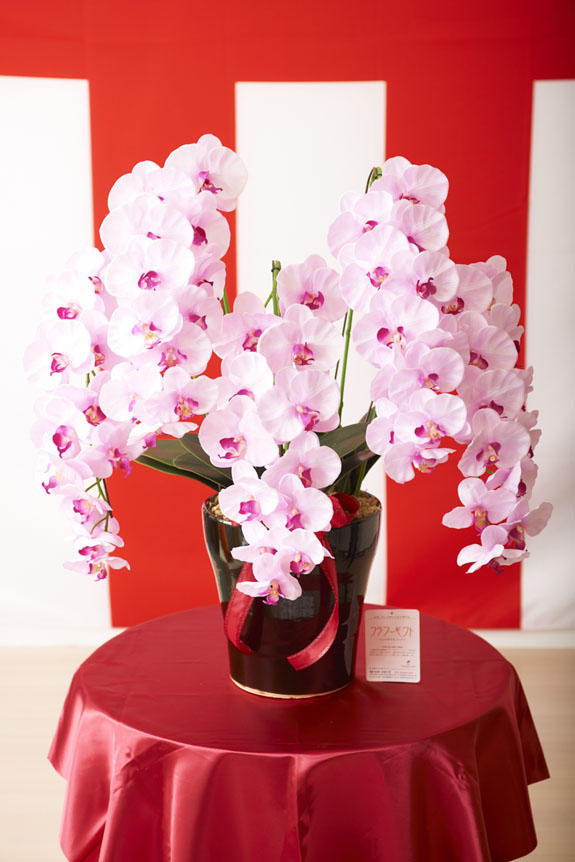 <p>様々なお祝いの贈り物に人気の胡蝶蘭の造花アートです。</p>