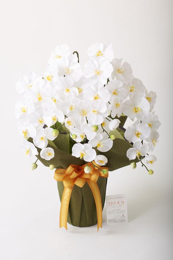 <p>様々な御祝いギフトにぴったりな造花アート・アレンジメント エレガント胡蝶蘭W</p>