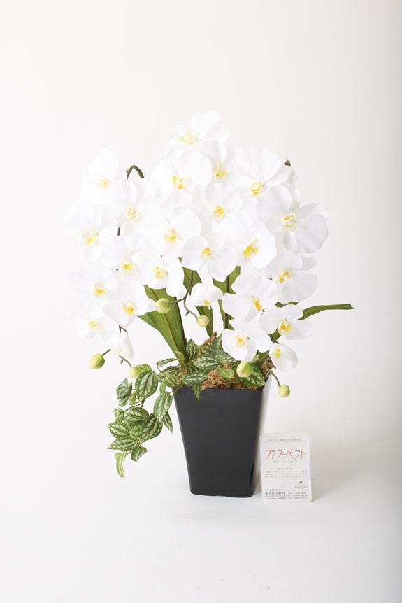 <p>造花アート・アレンジメント プリンセス胡蝶蘭3本立Wは、様々な御祝いにぴったりです。</p>
