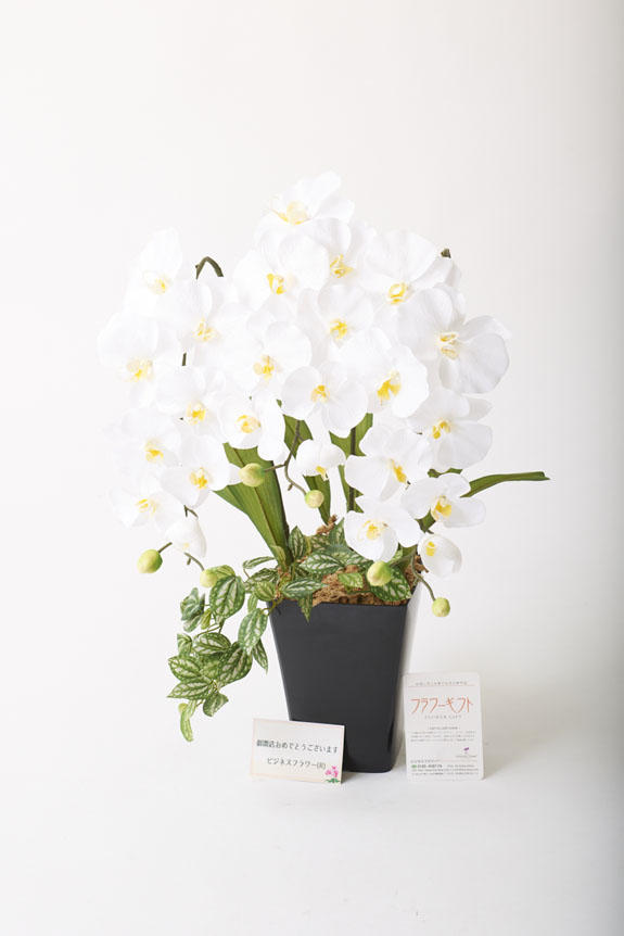 <p>造花アート・アレンジメント プリンセス胡蝶蘭3本立Wには、無料で立札又はメッセージカード(選択)をお付けすることが出来ます。</p>