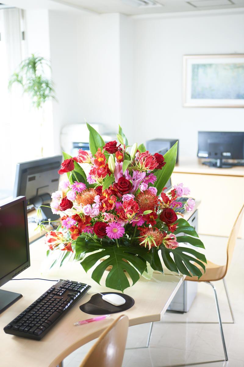 <p>お店やオフィス、自宅のどんな空間にもマッチするアレンジメントフラワーはビジネス用途、個人用途にもお薦めのお祝い花です。</p>