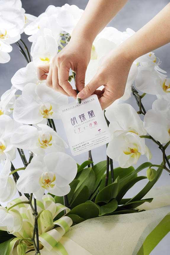<p>祝い花や供花を販売するネットの花屋ビジネスフラワー®の品質保証タグが付いているので、万が一の際もご安心ください。</p>