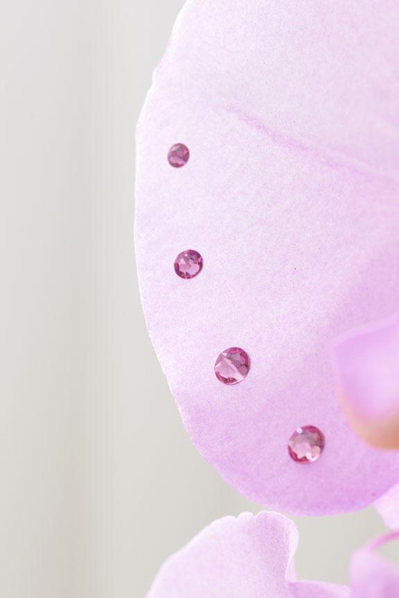 <p>特殊加工で色付けた胡蝶蘭の花びらに、同色のスワロフスキーのラインストーンが輝くお洒落で特別な一品です。</p>