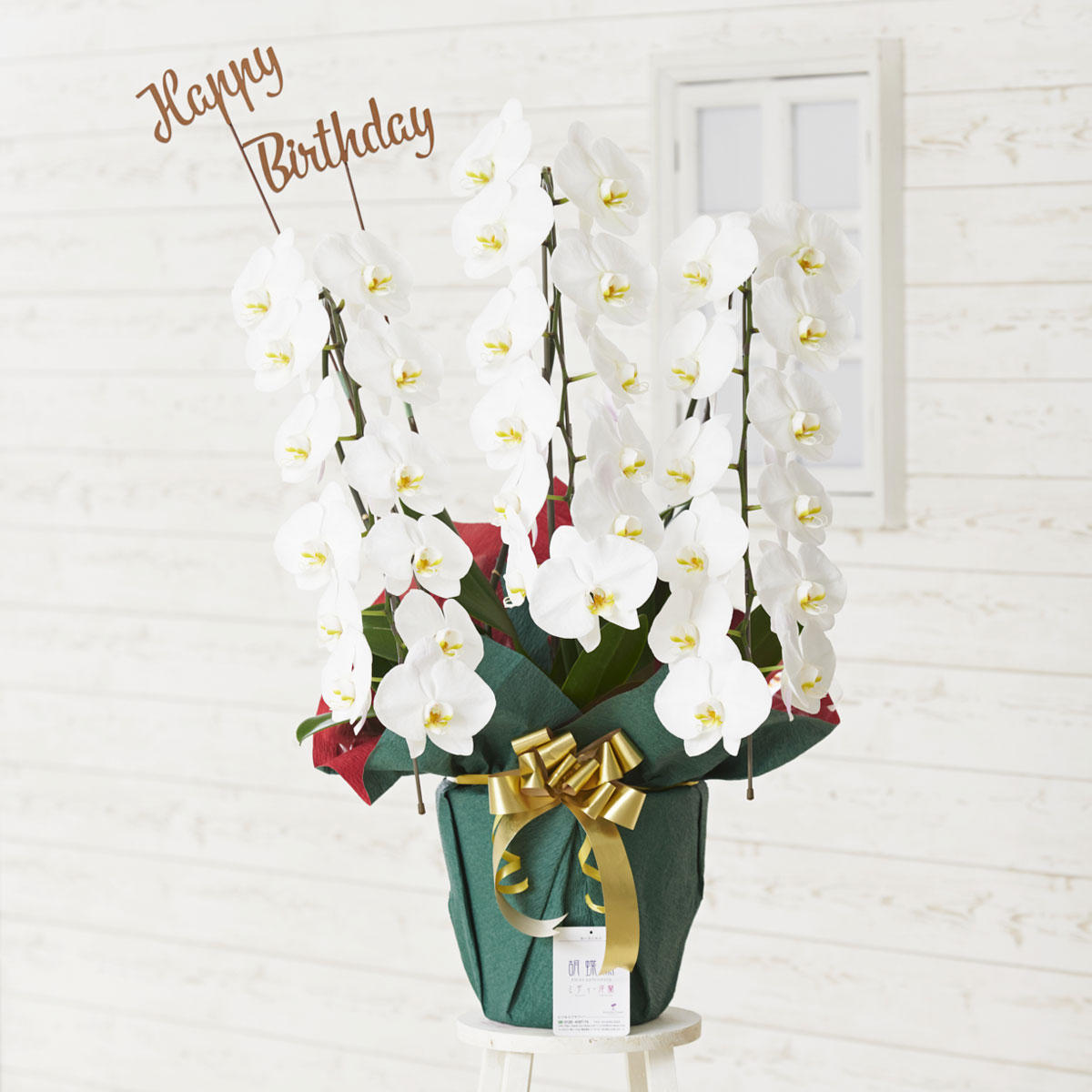 <p>胡蝶蘭に3D立体メッセージ札[Happy Birthday(文字型)]を付けたイメージ</p>