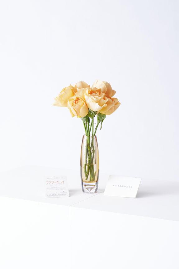 <p>花瓶花(フラワーベース)には、メッセージカードを無料でお付けする事が可能です。</p>